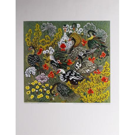 Poster Canards de Loul d'après Dom Robert